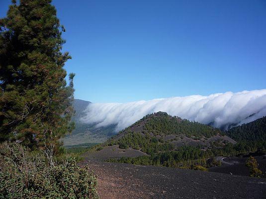 Lave skyer